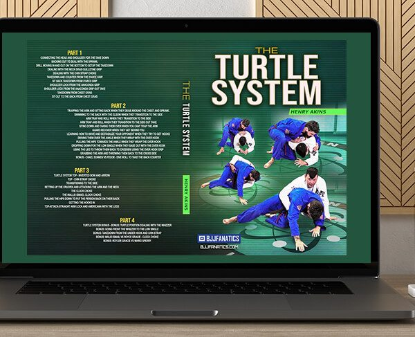 Henry Akins - The Turtle System by https://koiforest.com/