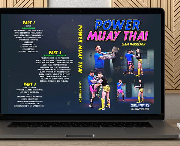 Power Muay Thai by Liam Harrison by https://koiforest.com/