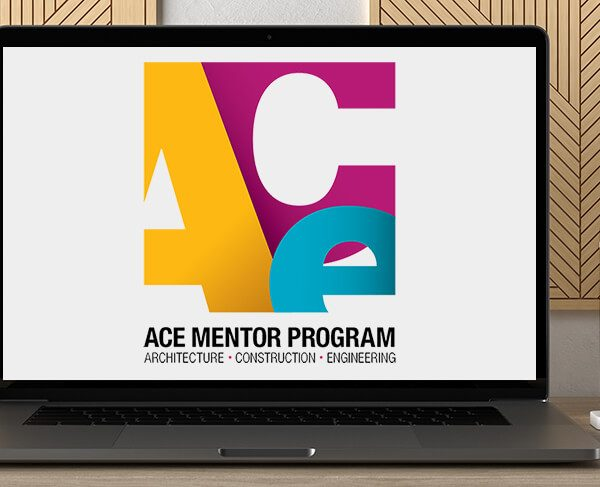 ACE Guides and Mentors by https://koiforest.com/