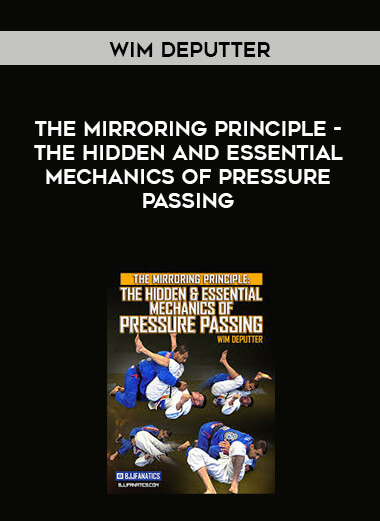 The Mirroring Principle-The Hidden and Essential Mechanics of Pressure Passing by Wim Deputter form https://koiforest.com/