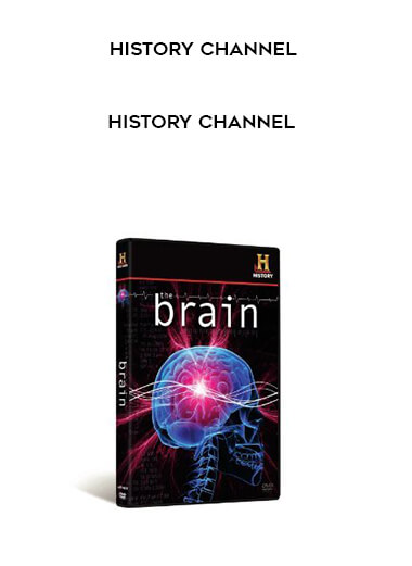 History Channel - The Brain form https://koiforest.com/