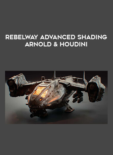 Rebelway Advanced Shading Arnold & Houdini form https://koiforest.com/