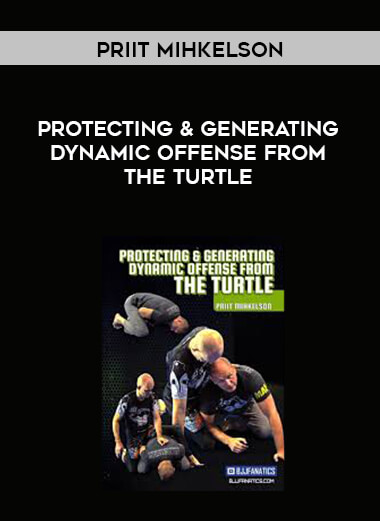 Priit Mihkelson - Protecting & Generating Dynamic Offense From The Turtle form https://koiforest.com/