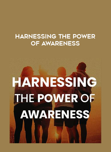 Harnessing the Power of Awareness form https://koiforest.com/