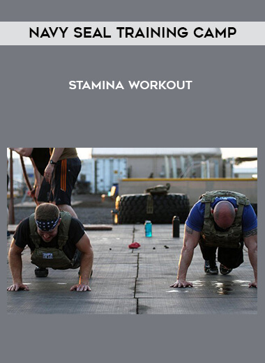 Navy Seal Training Camp - Stamina Workout form https://koiforest.com/