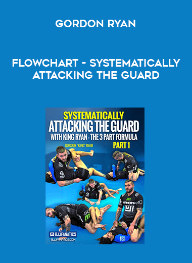 FlowChart - Systematically Attacking The Guard by Gordon Ryan form https://koiforest.com/