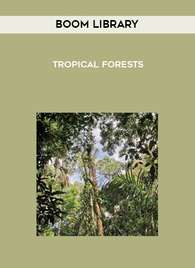 Boom Library - Tropical Forests form https://koiforest.com/