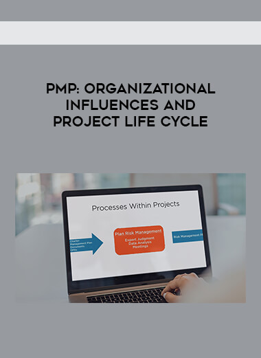 PMP  - Organizational Influences and Project Life Cycle form https://koiforest.com/