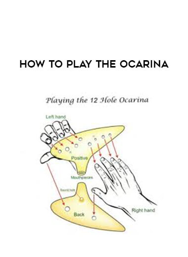 How to Play the Ocarina form https://koiforest.com/