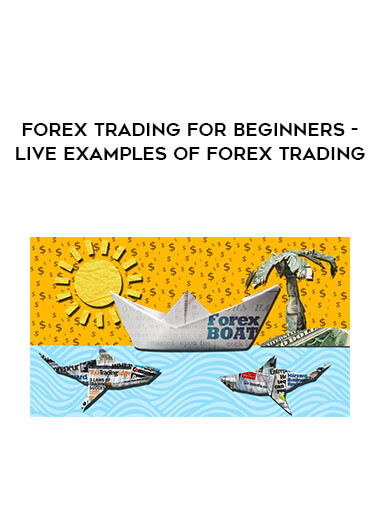 Forex Trading for Beginners - LIVE Examples of Forex Trading form https://koiforest.com/