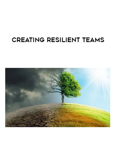 Creating resilient teams form https://koiforest.com/