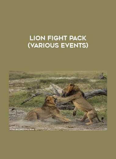 Lion Fight Pack (Various Events) form https://koiforest.com/
