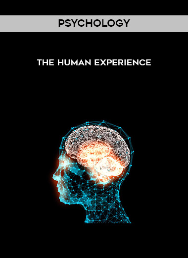 Psychology - The Human Experience form https://koiforest.com/