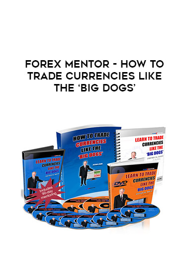 Forexmentor - HOW TO TRADE CURRENCIES LIKE THE 'BIG DOGS' form https://koiforest.com/